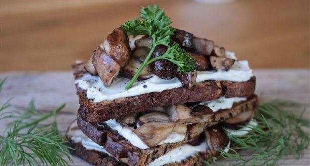 Brood met champignons