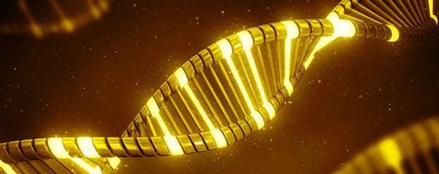 Erfelijke genen voor diabetes type 2