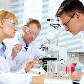 Afweercellen en vetcellen in gesprek