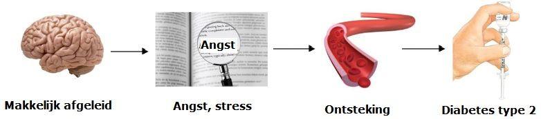 Zo leidt stress tot diabetes type 2